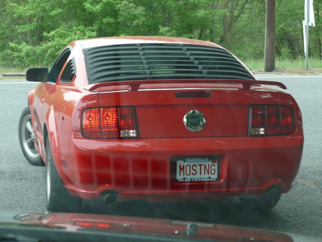 We stopped behind this Mustang GT while on vacation in New England. (car_0026.jpg, 640w x 480h )